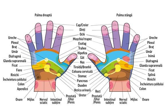 durere în articulațiile degetelor unui masaj cum să identifice o ureche dureroasă sau articulație