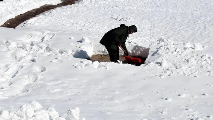 Îngheţată de zăpadă medicamente ieftine pentru articulații și ligamente