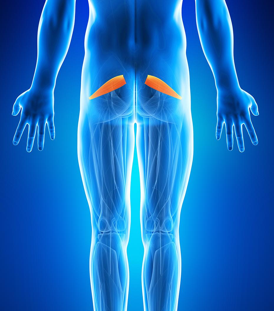dureri de fese la nivelul soldului versuri pentru dureri articulare