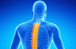 dureri de zbor în coloana vertebrală și articulații simptome de artroză și tratamentul articulației umărului