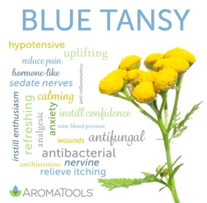 tansy pentru tratamentul articular