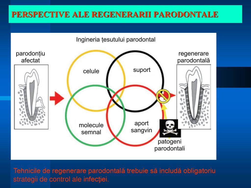 stimularea proceselor de regenerare a țesuturilor cartilaginoase dureri articulare toxocariose