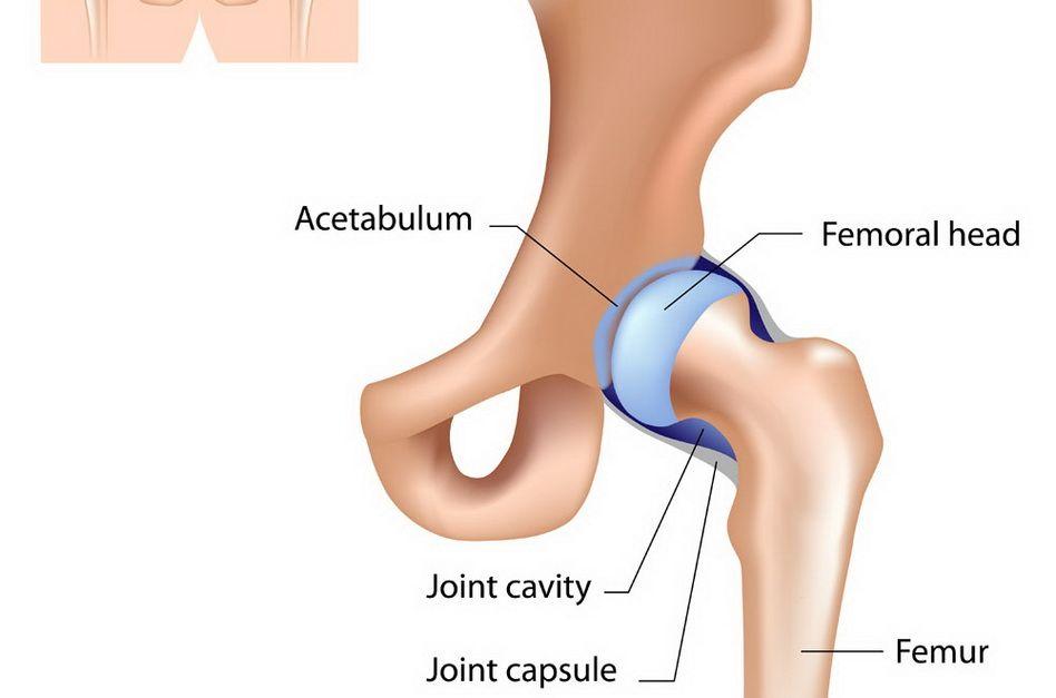 poate răni articulația șoldului cu osteochondroză dureri de cot noaptea