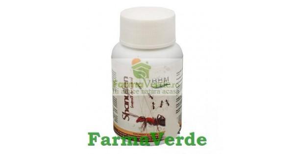 furnicile pentru tratamentul articular