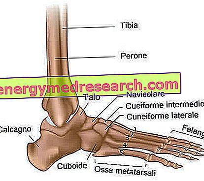 dureri la nivelul articulațiilor cotului cum să tratezi