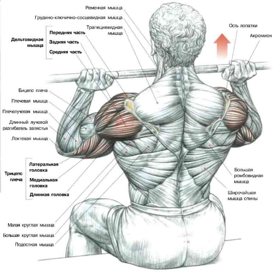 Ghid practic de exercitii in durerea de umar