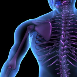 acel terrier are o problemă comună tratamentul artritei infecțioase a articulației șoldului