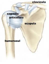 articulația doare din exterior complex cu condroitină și glucozamină