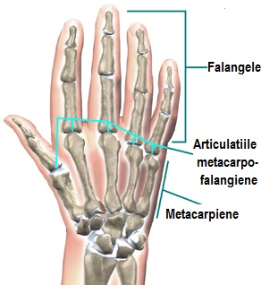 unde articulațiile sunt tratate în Magnitogorsk durere severă în articulația cotului stâng