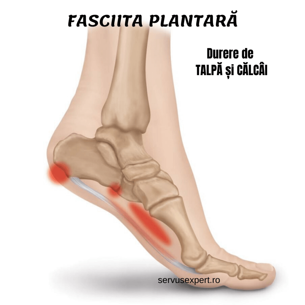 dureri articulare la picior